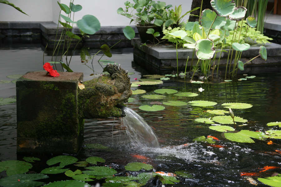 Experience a royal holiday in luxury seminyak villa bali for Modern koi pond