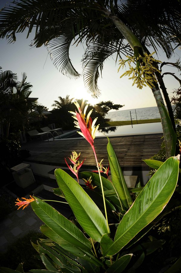 Koh Chang Villa 4265 manicured gardens and native flowers