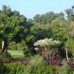 Chiang Mai Villa 4407 Outer Gardens