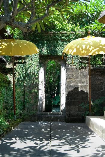 Seminyak Villa 300 Villa gardens