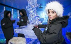 minus-5-ice-bar