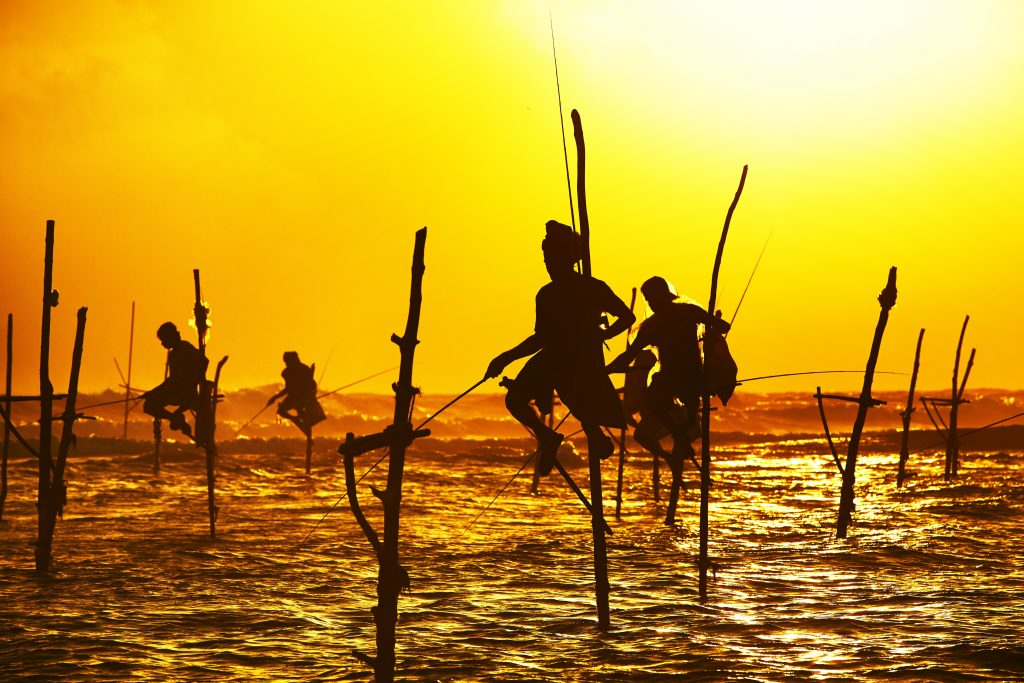 Stilt fishing in Sri Lanka - Luxury Holidays with Villa Getaways
