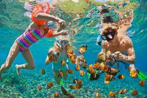 Snorkelling with villa getaways